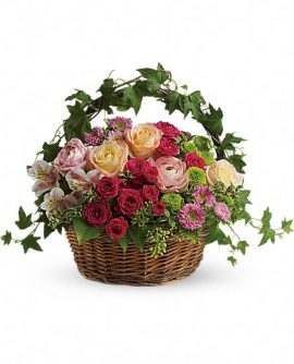 Image of Flowers or flower product titled Fairest of All