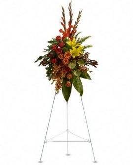 Image of Flowers or flower product titled Tropical Tribute Spray
