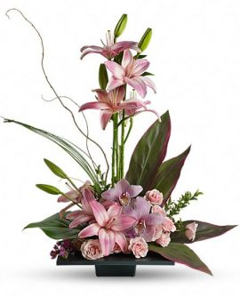 Image of Flowers or flower product titled Imagination Blooms With Cymbidium Orchids