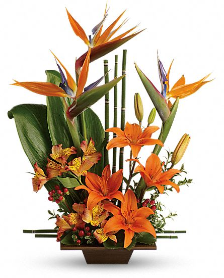 Image of Flowers or flower product titled Exotic Grace