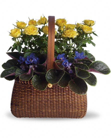 Image of Flowers or flower product titled Garden To Go Basket