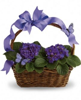 Image of Flowers or flower product titled Violets And Butterflies