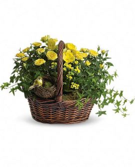 Image of Flowers or flower product titled Yellow Trio Basket