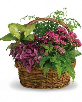 Image of Flowers or flower product titled Secret Garden Basket