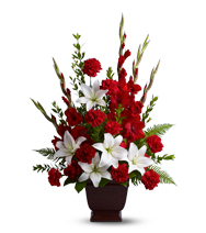 Image of Flowers or flower product titled Tender Tribute