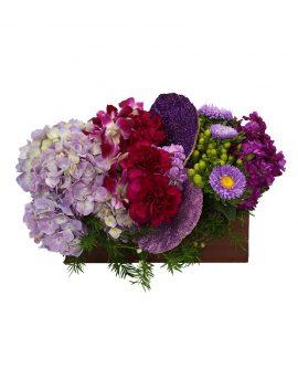 Purple Passion Arrangement