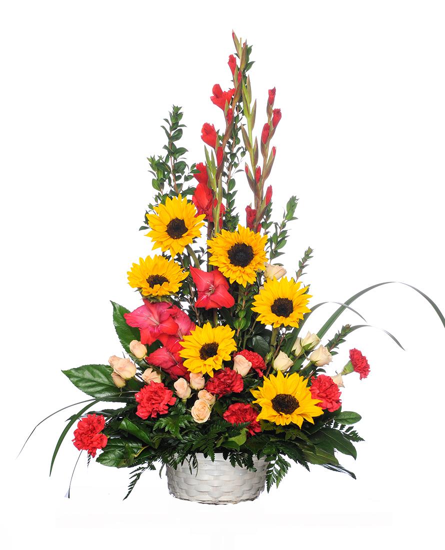 Sunflower Treasure
