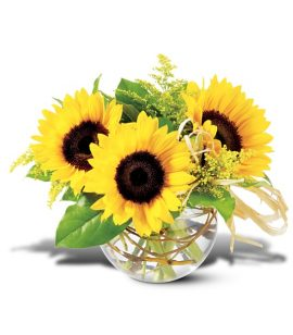 Image of Flowers or flower product titled Sassy Sunflowers