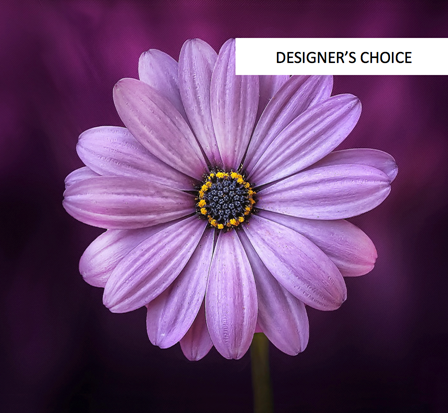 Image of Flowers or flower product titled Designer's Choice