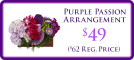 Purple Passion Promo