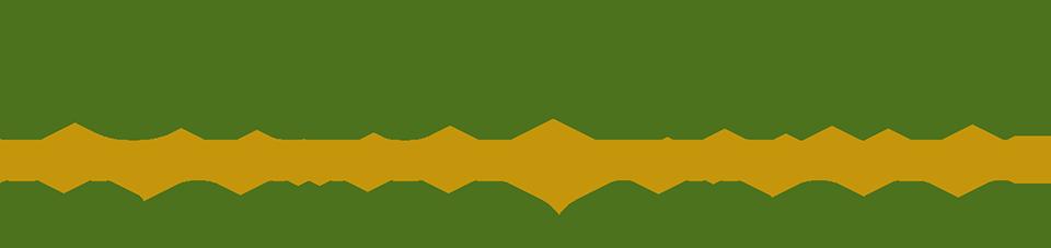 FlowerShop-Logo